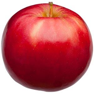 Sadnice jabuka sorte - Ajdared