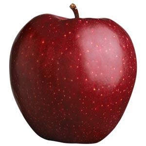 Sadnice jabuka sorte - Crveni Delišes
