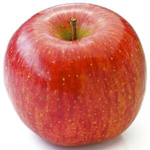 Sadnice jabuka sorte - Fuji
