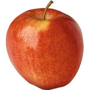 Sadnice jabuka sorte - Gala