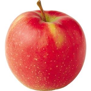 Sadnice jabuka sorte - Jonagold