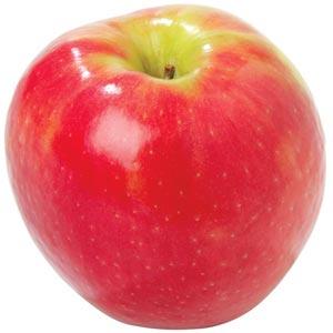 Sadnice jabuka sorte - Pink Lejdi