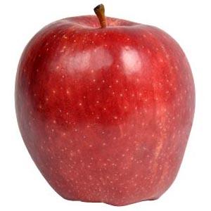Sadnice jabuka sorte - Red Čif