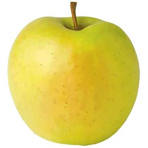 Sadnice jabuka sorte - Zlatni Delišes